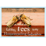 Adding Bees to my homesteading Adventure!